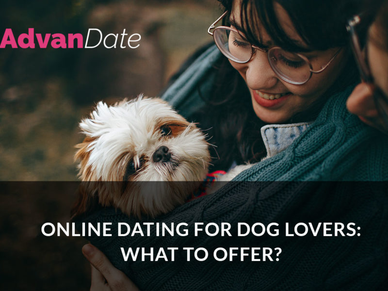 Online dating for dog lovers: what to offer?